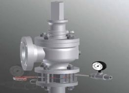 Advantages of Rupture Disks Used in Combination with Safety Relief Valves